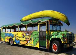 banana-bus-3