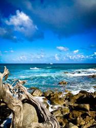 Aruba north coast
