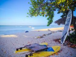 Paddle boards Palm Beach Aruba