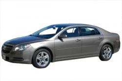 National Car Rental Aruba Phone Number