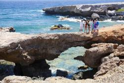 De Palm Tours Discover Aruba by bus 6.jpg