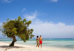 De Palm Tours Discover Aruba by bus 7.jpg