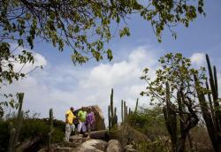 De Palm Tours Sightseeing Aruba by bus 3.jpg