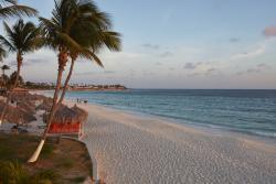 Divi_Aruba_Beach_3.jpg