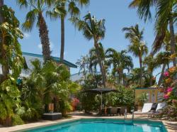 Paradera Park Pool View Porch Royal Suite