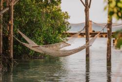 02 - Renaissance Island Hammock.jpg