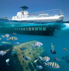 1 Seaworld Explorer resize.jpg