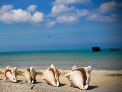 Aruba Sunset Beach Studios - View 2.jpg