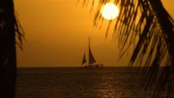 02. Catamaran Dolphin Sunset Cruise.jpg