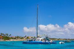 Catamaran Dolphin pic 2 2020.jpg