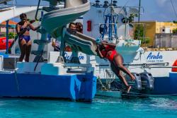 Catamaran Dolphin water slide Too 2020.jpg